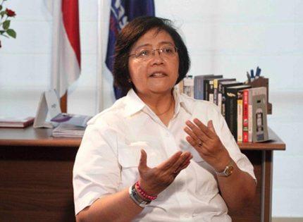 """Menteri LHK Siti Nurbaya: """"Panasbumi Harus Dimanfaatkan Sebagai Energi Terbarukan"""""""