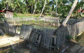"""Potensi """"Energi Hijau"""" di Kalimantan Timur"""