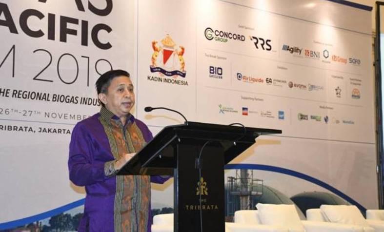 Kadin Sebut Regulasi Berubah-ubah Perburuk Investasi EBT di Indonesia