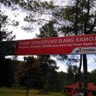 Pusat Konservasi Elang Jawa Kamojang